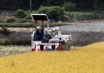 장정민 옹진군수 영농현장 및 민생현장 방문